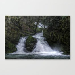 Dual Waterfalls Canvas Print
