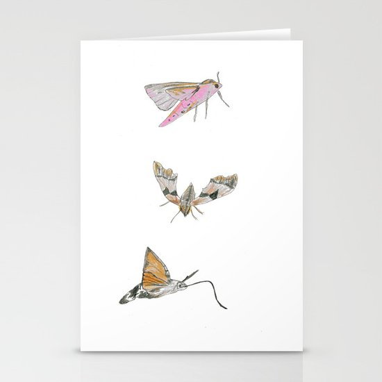 Biro and coloured pencil illustration of hawkmoths Stationery Cards