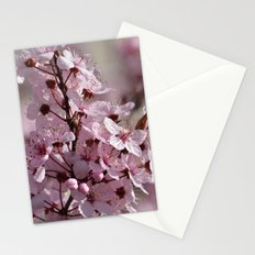 Spring Pink Cherry Blossom Flowers Stationery Cards