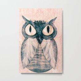 Owl number two Metal Print