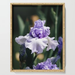 Lavender Iris Serving Tray