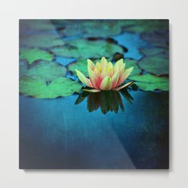 waterlily textures Metal Print