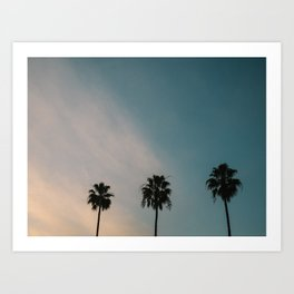 Palm Trees, Culver City Art Print