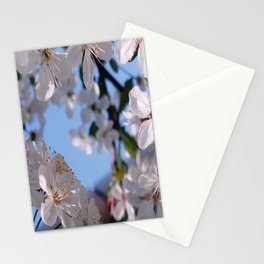 Blooming in White Stationery Cards