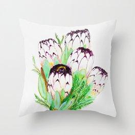White protea, Australian Protea flower, tropical Throw Pillow