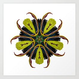 Indian Tribal Feather Star Art Print