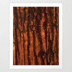Textures - Wood Art Print