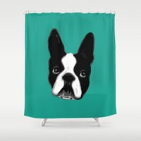 boston terrier Shower Curtains featuring Boston Terrier by punchbrand