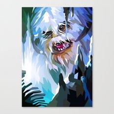 SW#34 Canvas Print