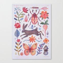 Et coloris natura V Canvas Print