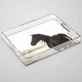 Klaas Acrylic Tray