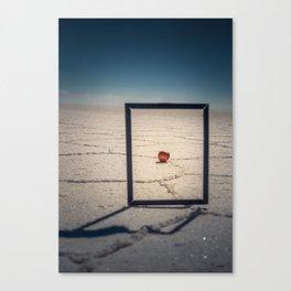 Frame, Apple & Salt Canvas Print