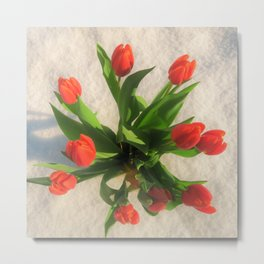 yearning for spring Metal Print