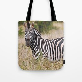 Zebra in the grass - Africa wildlife Tote Bag