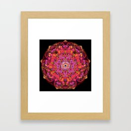 YMLOM - Pinky Poppa Framed Art Print