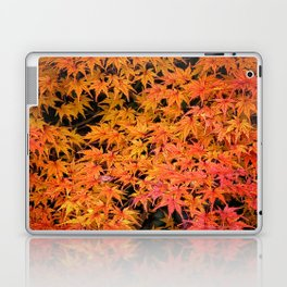 Japanese Maple Leaves Laptop & iPad Skin