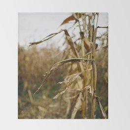 Autumn Cornstalk I Throw Blanket