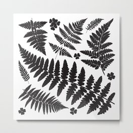 Black and White Ferns Metal Print