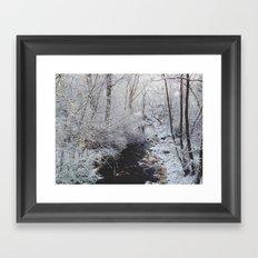 Winter Creek Framed Art Print