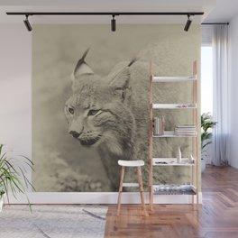 beautiful lynx Wall Mural