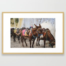 Island Ride Framed Art Print