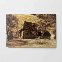 Country life Metal Print
