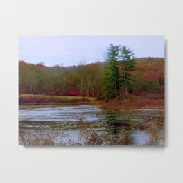 Evergreen Pond Metal Print