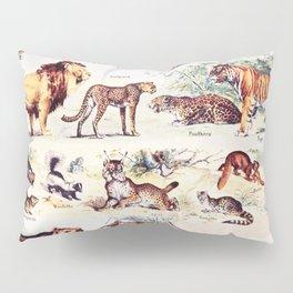 Vintage Antique Wildlife Encyclopedia Print Pillow Sham