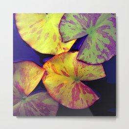 lily pads IIX Metal Print