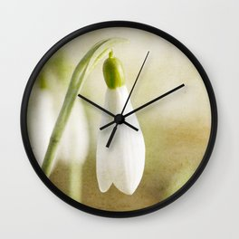 Snowdrop textured Wall Clock