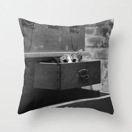 Cat in the closet Throw Pillow