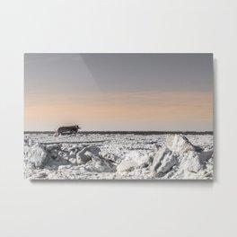 Icy Edge Metal Print