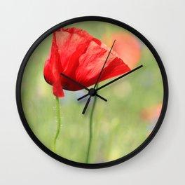 poppy flower no7 Wall Clock
