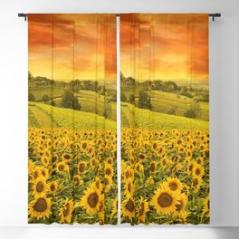 Red sunset over the rolling sunflowers and sunflower fields of Tuscany, Italy Blackout Curtain