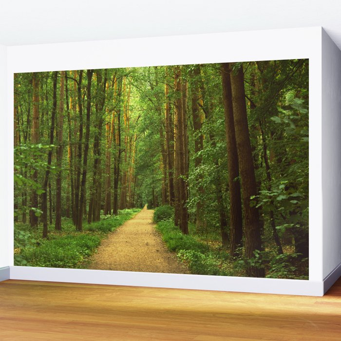 Forest path Wall Mural