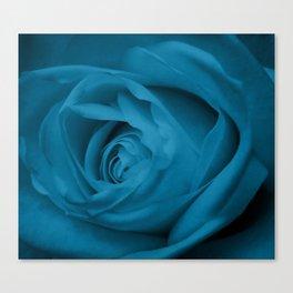 Teal Rose Canvas Print