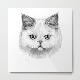 White Cat portrait G130 Metal Print