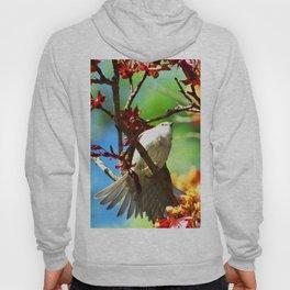 Colors of Spring Bird Hoody