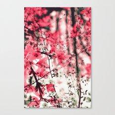 Spring Mix Canvas Print