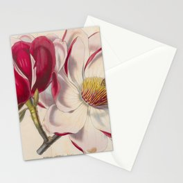 Campbell's MAGNOLIA Stationery Cards