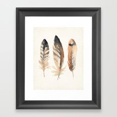 Watercolor Feathers Framed Art Print