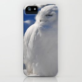 Snowy in the Snow by Teresa Thompson iPhone Case
