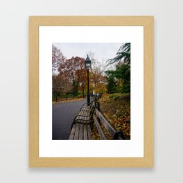 NYC Benches & Trees Framed Art Print