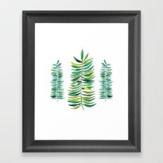 Three Ferns Framed Art Print