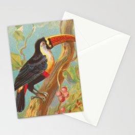 Toco Toucan Birds of the Tropics Series by A&G Stationery Cards