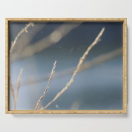Branch Tree Bluesky Bokeh Abstract Serving Tray
