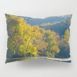Autumn Sunshine Pillow Sham