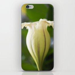 Chalice Vine iPhone Skin