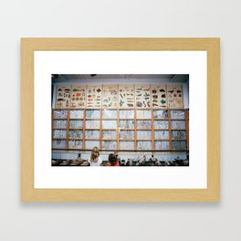 Bug Collectors Framed Art Print