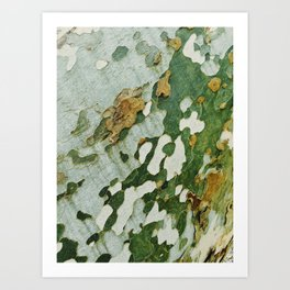 Green Bark Art Print